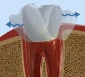 Подвижные зубы? Стоматологическая клиника поможет!